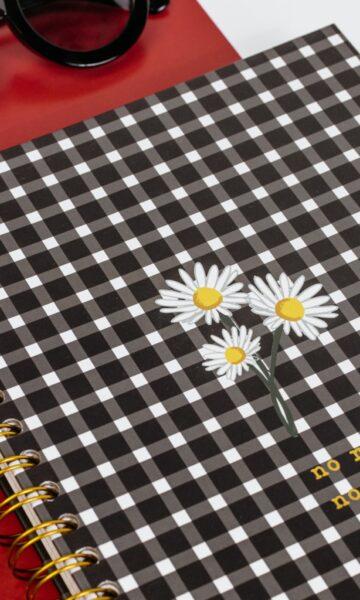 la-coqueta-lola-invitada-casual-luciabe-papelería-cuaderno-bullet-journal-vichy